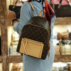 Louis Vuitton Bayan Sırt Çantası